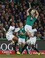 Ever-busy winger Andrew Trimble leaps for a high ball with South Africa's Elton Jantjies Credit: ©INPHO/Billy Stickland