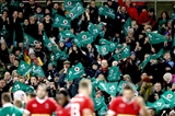Flag-waving Ireland fans celebrate Ultan Dillane's try for Ireland in the second half Credit: ©INPHO/Billy Stickland